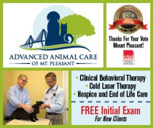 Visit Advanced Animal Care of Mt. Pleasant online
