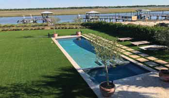 Get ON This Lawn: Palmetto Moon Synthetic Turf