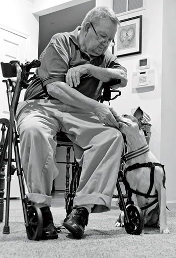 man in a wheelchair with his service dog. Photo courtesy of Jeanne Taylor Photography.