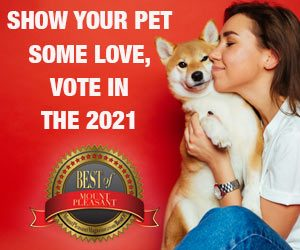 Show Your Pets Some Love - Vote in Best of Mount Pleasant 2021