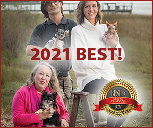 See the 2021 and 2020 Best of Mount Pleasant in Pets categories!