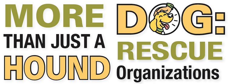 Rescue Organizations: More than just a hound dog