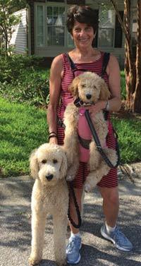 MT PLEASANT FAVORITE PET: Shiloh and Maya the Standard poodles