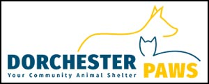 Dorchester Paws in Summerville, SC. YOU CAN HELP Make a Life-Changing Difference for Animals.