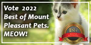 Vote in the Pet section of the Best of Mount Pleasant now!